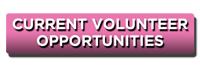 Current Volunteer Opportunities BTN